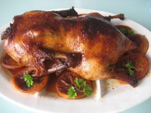 Divlja-patka