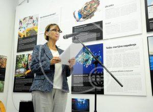 Beograd, 26. septembra 2016 - Ambasadorka Francuske u Srbiji Kristin Moro govori na predstavljanju naucnih projekata za borbu protiv klimatskih promena, u Francuskom kulturnom centruFOTO TANJUG/ DIMITRIJE GOLL/dr